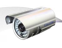 CAL-3131